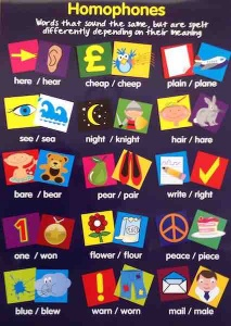 Homophones Wallchart